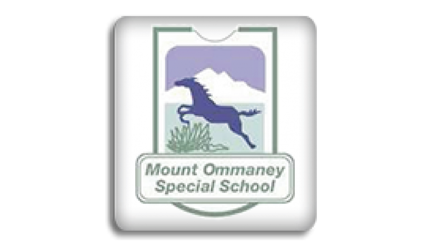 Mount Ommaney School